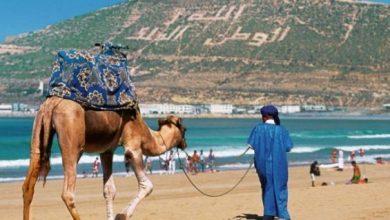 صورة عائدات السياحة.. خسارة بقيمة 3 ر12 مليار درهم في نهاية أبريل