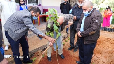صورة طانطان..مدرسة بئرانزران الإبتدائية تحتفل بالأسبوع الوطني للتعاون المدرسي