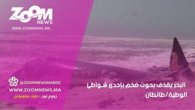 صورة البحر يقذف بحوت ضخم بإحدى شواطئ الوطية/طانطان